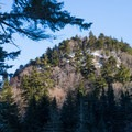 The peak of Sugarloaf between the trees- Taylor Lodge Snowshoe via Nebraska Notch