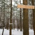 Unique trail markers.- Journey's End