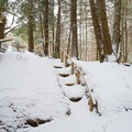 One of the staircases constructed from natural materials.- Journey's End