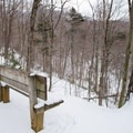 A bench early in the hike overlooks the Brush Brook valley.- Camels Hump Via The Burrows Trail