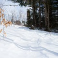 Trail conditions vary.- Smuggler's Notch Nordic Center