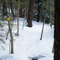 Snowshoe trails are marked with different colored blazes.- Smuggler's Notch Nordic Center
