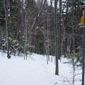 Bird feeders along the Fox Snowshoe Loop.- Smuggler's Notch Nordic Center