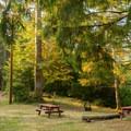 Day use picnic areas around Loon Lake.- Loon Lake Lodge Waterfront House