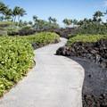 The path to Kikaua Point.- Kikaua Point Park + Beach
