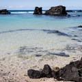 The shallow, protected waters of Kikaua Point.- Kikaua Point Park + Beach
