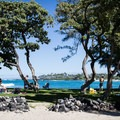 A small grassy area provides some shade for visitors to Kikaua Point, but it is away from the main swimming area.- Kikaua Point Park + Beach