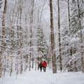 Beginning of the hike to Willard Mountain.- Mount Willard: Winter Hike