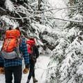 The approach to Willard Mountain.- Mount Willard: Winter Hike