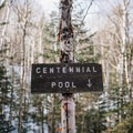 Centennial Pool is a half mile from the start.- Mount Willard: Winter Hike
