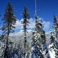 Mountain views from the Maiden Peak Trail.- Maiden Peak Cabin Snowshoe via Gold Lake Sno-Park
