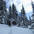 Carrying an overnight pack up the Maiden Peak Trail.- Maiden Peak Cabin Snowshoe via Gold Lake Sno-Park
