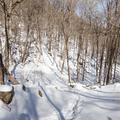The White Trail descends.- North Point via U.S. Route 9W