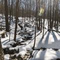 Streams across the Blue Trail.- North Point via U.S. Route 9W