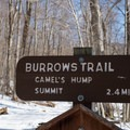 Signage at the start of the trail.- Camels Hump Via The Burrows Trail