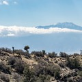 Mount San Jacinto above the Coachella Valley.- Eureka Peak via Covington Road