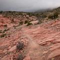 Trail across Keystone Thrust.- Keystone Thrust