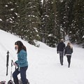 Off trail travel usually requires snowshoes.- Secret Falls Snowshoe