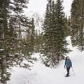 Enjoying the scenery along the Secret Falls Snowshoe.- Secret Falls Snowshoe