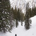 From the top you get some great cross-canyon views looking north.- Secret Falls Snowshoe