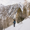 Secret Falls Snowshoe.- Secret Falls Snowshoe