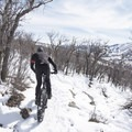 Many fat bikers like the more technical aspects of the Cove.- Round Valley Trails, Cove Trailhead
