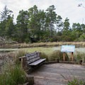 A resting spot along trail is perfect for bird watching.- Lagoon Loop Trail