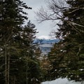 Looking through the trees at Mount Washington.- Doublehead Mountain