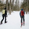 The route to Doublehead Mountain is great for skiing or snowshoeing.- Doublehead Mountain