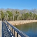 Couchville Lake.- Couchville Lake