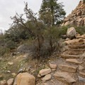 Stone steps that climb out of the wash.- Lost Creek Canyon Falls