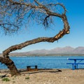 Lake Havasu.- Lake Havasu State Park Campground