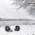 Snowshoes by the Hudson River.- Mills-Norrie State Park