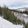 Looking back toward the trailhead after making the initial ascent.- Stewart Falls + Honeymoon Meadow Snowshoe
