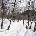 Trail markers on the snowshoe path.- Stewart Falls + Honeymoon Meadow Snowshoe