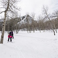 Cross-country skiers on the groomed path.- Stewart Falls + Honeymoon Meadow Snowshoe