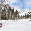 Stewart Falls and Honeymoon Meadow snowshoe.- Stewart Falls + Honeymoon Meadow Snowshoe