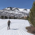 Groomed trails at the White Pine Nordic Center.- White Pine Nordic Center