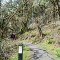 Trail toward the Martin Street Trailhead.- Ridgeline Trail System: Fox Hollow Trailhead