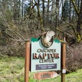Cascades Raptor Center near the Fox Hollow Trailhead parking area.- Ridgeline Trail System: Fox Hollow Trailhead