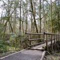 Footbridge along the trail.- Ridgeline Trail System: Martin Street Trailhead to Fox Hollow Trailhead