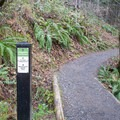 Trail sign with mile markers along the trail. - Ridgeline Trail System: Martin Street Trailhead to Fox Hollow Trailhead