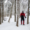 The park is known to be very cold in the winter. Walking in the forest among icy trees is worht the visit.- Three Summits Loop