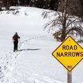 Headed right.- Hahns Peak Lake Area