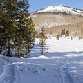 Multiple tracks to choose from.- Hahns Peak Lake Area