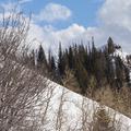 A small peak to climb along the way.- Hahns Peak Lake Area