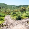 The junction of the Pipeline Trail and the Cottonwood Trail.- Yavapai Point Trail