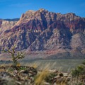 The mountains of Red Rock Canyon make the backdrop to the return hike.- Las Vegas Overlook Trail