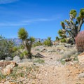 The second half of the loop route is much more scenic.- Las Vegas Overlook Trail