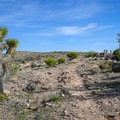 The ascent to the overlook will put your legs to the test.- Las Vegas Overlook Trail